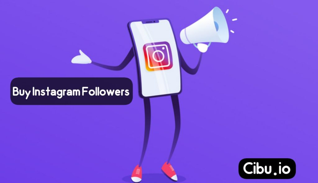 followerss 1024x592 - Buy instagram Followers