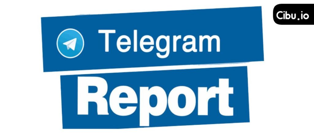 tttttt 1024x443 - Fixing Telegram Reports in the simplest way